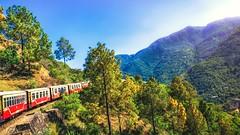 Heritage Train (Sunny_mjx) Tags: holiday green heritage nature train toy shimla simla hp track unesco railways narrow himachal himalayas kalka