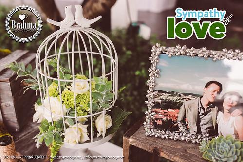 Braham-Wedding-Concept-Portfolio-Sympathy-Of-Love-1920x1280-48