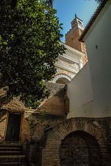 Mosque Sidi Boumediene, Tlemcen (Silk Roads) Tags: tlemcen algeria algrie mosque garden jardin minaret shadow muslim art  tlemsan mosque sidi boumediene mezquita nikonflickraward