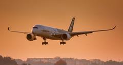 "Airbus A350XWB ""Charlie Fox"" (Rami Khanna-Prade) Tags: tls toulouseblagnacairport aeroporttoulouseblagnac lfbo charliefox fwwcf msn002 airbus airport aeroport ramikhannaprade avions aircraft industrie a350xwb trent xwb blagnac toulouse france carbon a350900 a350 a359 airbusindustrie a350941 airbusa350941 msn 002 trentxwb84 avporn aerophotography avgeek aviation plane planeporn airbus airlines flight fly flightcrew airplane planespotting instaplane instaaviation travel planespotter aviationlovers"