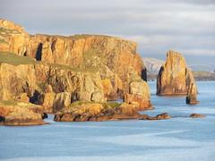 Braewick Cliffs in the Evening, Shetland, 21 July 2016 (AndrewDixon2812) Tags: shetland eshaness braewick rocks cliffs headland hillswick northmavine