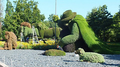 Gallery images of the Botanical Garden in Canada (PhotographyPLUS) Tags: articles footage freephoto graphics illustrations images photos pictures stockimage stockphotograph stockphotos
