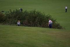 DSC_0813 (seustace2003) Tags: baile tha cliath ireland irlanda ierland irlande dublino dublin ire tymon park