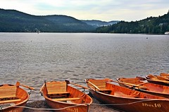 (laura.foto) Tags: germany deutscland schwarzland forestanera lake titisee boats