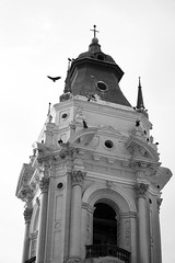 steeple (sophs123.) Tags: steeple church cathedral lima peru sudamerica south america latinoamerica architecture bw blackandwhite bird nature travel photography contrast canon canon400d