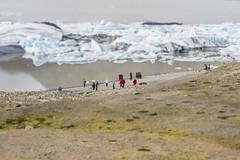 Tilt Shift Glacier Lagoon, Iceland (rjsnyc2) Tags: d810 europe glaciers iceland landscape nikon nikond810 reykjavik richardsilver richardsilverphoto richardsilverphotography travel travelphotographer travelphotography city barnafossar jokulsarion dyrholaey glacierlagoon lagoon glacierlake tiltshift