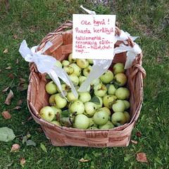 Kiitos! (neppanen) Tags: sampen discounterintelligence helsinki helsinginkilometritehdas suomi finland piv66 pivno66 reitti66 reittino66 lainlukijantie lainlukijantie29 omena apple torpparinmki