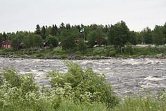 Finland (RundgrenR) Tags: finland lapland kukkola rapids