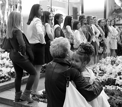 New York Rose Contest