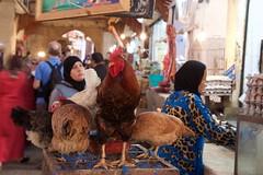 Fes 2015 IMG_6359.CR2 (Daniel Hischer) Tags: morocco fez fes