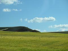 Gold field and blue sky near Marazovel, Spain (Paul McClure DC) Tags: españa spain castile castillayleón june2014 marazovel