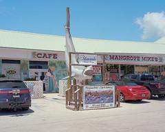 (lucas.deshazer) Tags: shark florida 4x5 islamorada chamonix largeformat kodakportra400