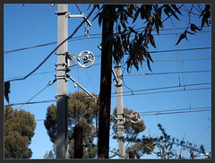 Racheted tension reels on overhead train powerlines (fotograf1v2) Tags: trees australia victoria poles pakenham electrictrains railwayoverheadpowerlines rachetedtensionreels
