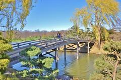 Bridge at Chicago Botanic Garden (stevelamb007) Tags: bridge trees people usa water landscape us illinois spring nikon telephoto glencoe woodenbridge chicagobotanicgarden 18200mm d90 stevelamb