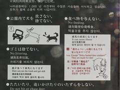 Gos vs Cérvol vs Cotxe (Avantime Jacobus) Tags: park art tokyo kyoto asia freak osaka nara japon mie cartell friki japo curiosos