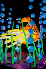 Norbert the Nautilus (Ample Projects) (Japester68) Tags: ocean city light sea sculpture seaweed art animal yellow festival night sydney vivid australia event nsw aus 5star nautilus