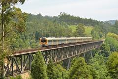 R 5402 - Luso (valeriodossantos) Tags: portugal train cp regional comboio luso mealhada passageiros caminhosdeferro linhadabeiraalta ute2240 cpregional automotoraeltrica pontedasvrzeas unidadetriplaeltrica
