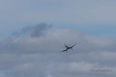 Vought F4U Corsair-51 (Clubber_Lang) Tags: airshow corsair farnborough f4u vought fia2016