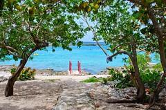 # #beach # #cuba # #500px #vsco #photoshop #instagramnikonrussia #natgeo #nikon #d610 #sigmaphoto #sandisk (Victor Chichenev) Tags: beach photoshop nikon cuba sandisk natgeo d610   500px  vsco sigmaphoto instagramnikonrussia
