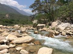 Vergel  (artx_let) Tags: naturaleza nature ro tranquilidad vergel yosondua yosonda