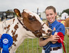 212/366 Abi and her Holstein - 366 Project 2 - 2016 (dorsetpeach) Tags: yeovilshow show agriculturalshow yeovil somerset england event cow cattle holstein 366project aphotoadayforayear 365 366 2016 second365project