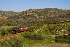 IMG_5828 (feverpictures) Tags: steam loco retro train bulgaria bdz cargo