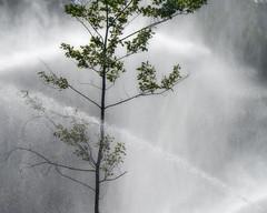 Comptition XTown (monilague) Tags: trees summer sky men water season eau day jour course foliage ciel arbres t motocross flou hommes blurb saison mirabel feuillage