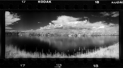 Columbia River Houseboats 16073917 (jimhairphoto) Tags: columbia river portland pdx widelux panorama kodak hie infrared 35mm film blackandwhite blancetnoir schwarzeaufweis blancoynegro blancinegre siyahrebeyaz jimhairphoto
