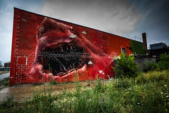 Detroit jaws (Phg Voyager) Tags: jaws shark building architecture photography phgvoyager leica m9 18mm red walls painting streetart city urban street color daylight dtroit michigan usa easternmarket vegetation fun abandoned