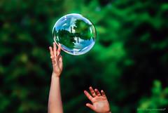 Fermando l'attimo (Borgo Armonico) Tags: bolladisapone bolla riflesso sfera mani verde
