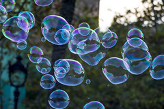 [18-09-2016]-1 (danimaqueda) Tags: bubble soapbubble bubbles nikon dslr d7100 70300 tamron 70300vr nikontop fotografia