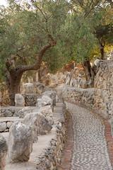 DSC_0890 (Sciabby) Tags: filippobentivegna facce faces stone pietra castelloincantato artbrut