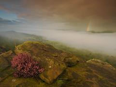 Sunrise rainbow (Thrift) Tags: curbar curbaredge peakdistrict derbyshire edge sunrise dawn mist inversion heather rainbow