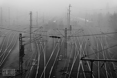 fog at switch yard (genelabo) Tags: sw bw schwarz weiss moosach rangierbahnhof fog nebel switch yard station münchen munich railway gleise herbst morning sony alpha apsc