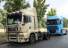 Trailer Tractors (Schwanzus_Longus) Tags: delmenhorst german germany modern vehicle truck lorry lkw laster lastwagen sattelschlepper trailer tractor creme blue freight cargo transport coe cab over engine man tga 18430 tga18430 daf xf spotted spotting