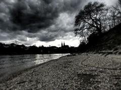 Basel (Impazzire_) Tags: trees blackandwhite clouds schweiz switzerland day riverside stones wolken grau basel steine ufer schwarzweiss rhine minster rhein bume mnster flussufer