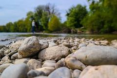 Ein Tag am Rhein