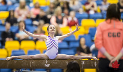 2015AGFArtistic-3077 (Alberta Gymnastics) Tags: college artistic womens gymnastics alberta mens federation provincials 2015 letbridge