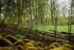 Day 102/365 (JohannesLundberg) Tags: se nationalpark sweden biology project365 protectedarea 365photos grdesgrd rebroln roundpolefence garphyttansnationalpark hankgrdesgrd