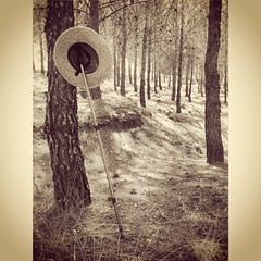 Descansando del camino. En el bosque. (JUANMA COSMEN) Tags: madrid españa blancoynegro mobile rural monocromo blackwhite pueblo movil bosque sombrero palo senderismo pinar colmenardeoreja movilgrafía mobilegrafia