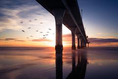 Seascape (DanielBartolo) Tags: ocean road new morning bridge winter sunset sea christchurch sky panorama sun seascape water birds sunrise landscape lights golden pier brighton long exposure colours zealand shore hour rays minimalist