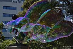 DSC_0139 (Raquel Glvez) Tags: soap bubbles soapbubbles burbujas jabon burbujasdejabon