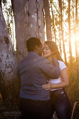 _MG_0129 (surrealcreative) Tags: serenidade aoarlivre paisagem pôrdosol floresta prewedding precasamento