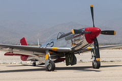 "P-51 Mustang ""Bunny"" (Trent Bell) Tags: hanger24 airfest airshow 8thanniversary redlands airport socal california 2016 aircraft p51 mustang bunny"