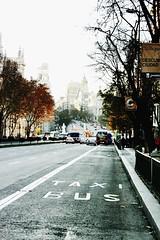 Madrid,Bus stop-SPAIN (rosyastarita) Tags: madrid street city bus taxi busstop spagna rambla