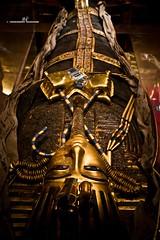 Sarcophagus (max.fontanelli) Tags: king treasure tomb egypt re tesoro tomba egitto oro tutankhamun pharaon golg faraone