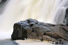 I M a Rock, I M an Island (emerge13) Tags: water rocks falls waterfalls stjeandematha mpdquebec saariysqualitypictures chutemontepeine thegalaxyhalloffame