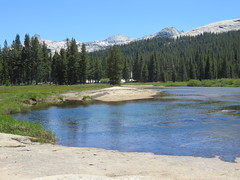 Tuolumne River 3 (wscottbliss) Tags: tuolumnemeadows yosemite glenaulin