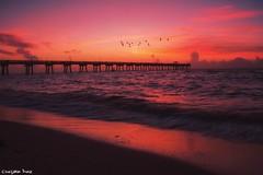 Sunrise by the pier.  (gusdiaz) Tags: dania beach florida fl sunrise colorful colorido amanecer sol playa arena agua olas sea beautiful summer vacation verano vacaciones