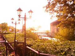 Hermans glow 1 (Helen White Photography) Tags: hermans restaurant vegetarian stockholm terraced gardens view sunset summer